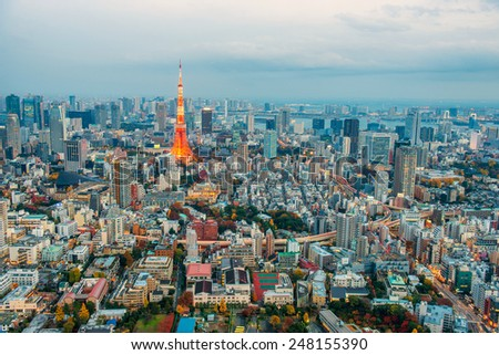 Aerial view of tokyo, Tokyo , Japan - stock photo