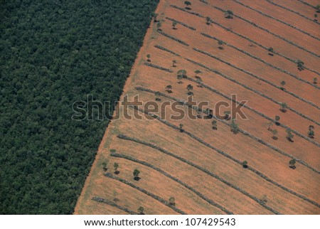 Aerial view of tropical deforestation, Mato Grosso do Sul, Pantanal, Brazil