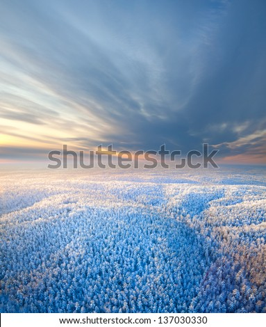Aerial view on the forest hills during winter sunset. Crowns of coniferous trees are lighted up by a bright setting sun. - stock photo