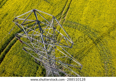 Aerial view on the powerlines on the large colza field - stock photo