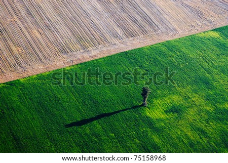 Aerial view over the green field - stock photo