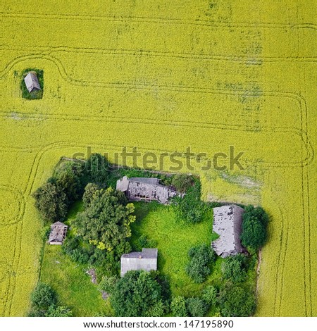 aerial view over the yellow field - stock photo