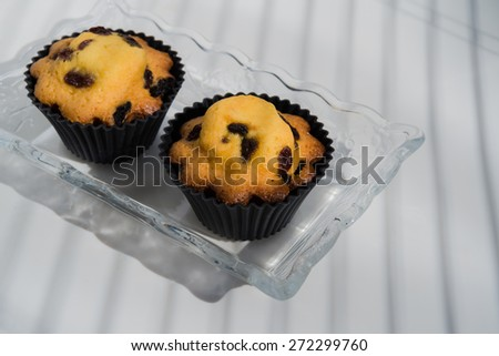 Aerial View two cupcakes on vintage glass plate white background Butter pastry cookie biscuit sponge cake with sultanas on background with natural light stripes - stock photo