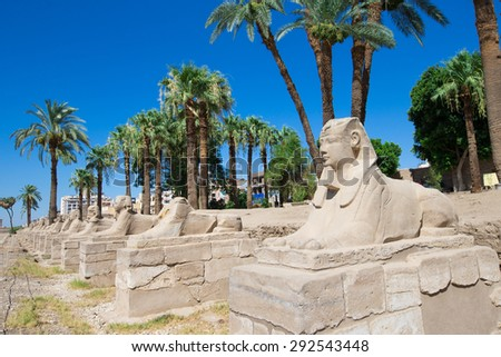 Africa, Egypt, Luxor, Amun Temple of Luxor. - stock photo