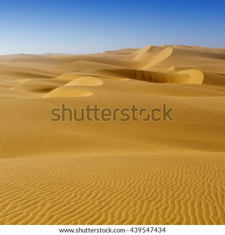 Africa.Fine place for photographers and travelers. Beautiful structures of sandy barkhans.. Increase in the areas of deserts.