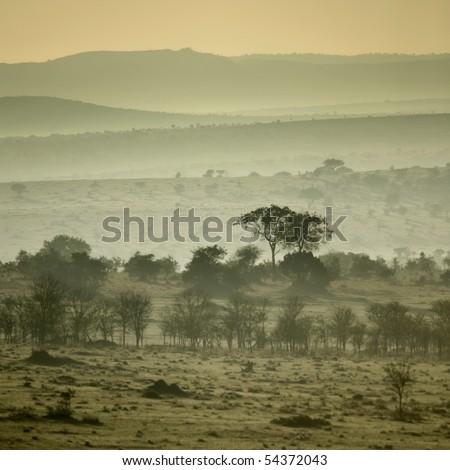 Africa landscape Serengeti National Park, Serengeti, Tanzania - stock photo
