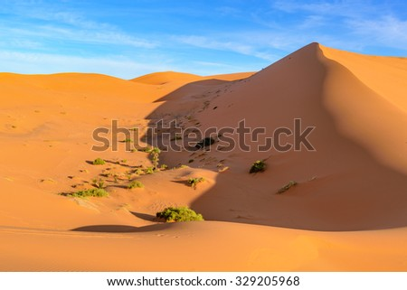 Africa, Morocco - view of an oasis in Erg Chebbi Dunes - Sahara Desert - stock photo