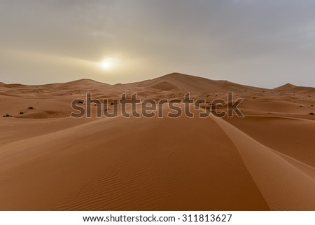 Africa - view of Erg Chebbi Dunes in Morocco- Sahara Desert - during sand storm