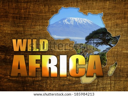 Africa Wildlife Map Design on papyrus