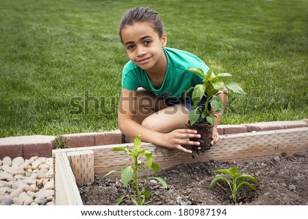 African American Girl Planting a new Plant - stock photo