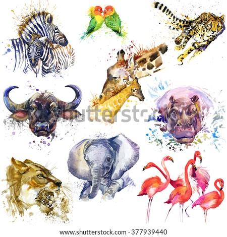 African animals set. Watercolor animal. Zebra, parrot, cheetah, buffalo, giraffe, elephant, hippo, flamingo, lion. - stock photo