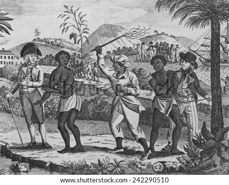 Can recommend african slave trade opinion