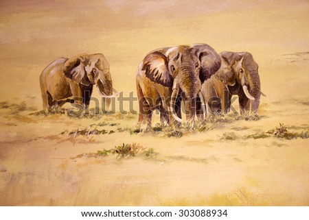 African Elephant, South Africa - stock photo