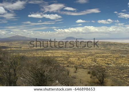 African Landscape of Savannah National Park of Serengeti in Tanzania