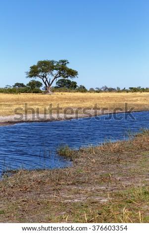 African landscape, river in national park Nambwa on Caprivi Strip Namibia - stock photo