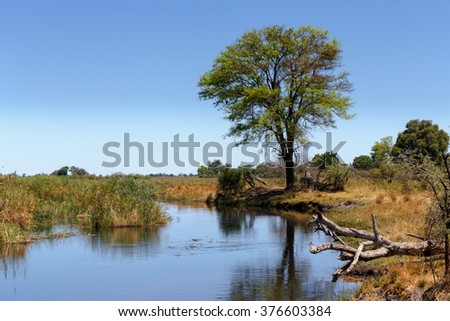 African landscape, river in national park Nambwa on Caprivi Strip Namibia - stock photo