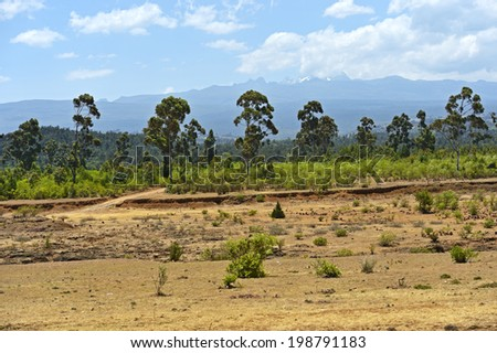 African landscape with a view of Mount Kenya