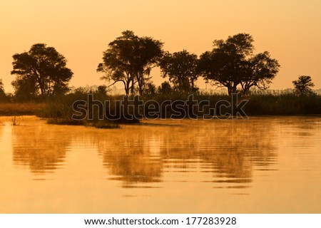African landscape with trees reflected in water at sunrise, Kwando river, Namibia - stock photo