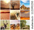 african landscapes collages - stock photo
