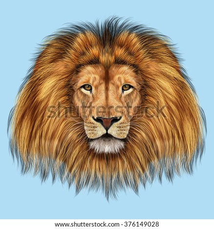 African Lion. Illustrated portrait of Lion on blue background. - stock photo