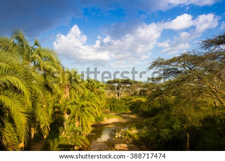 African river with palm trees