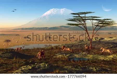 African Sunrise - stock photo
