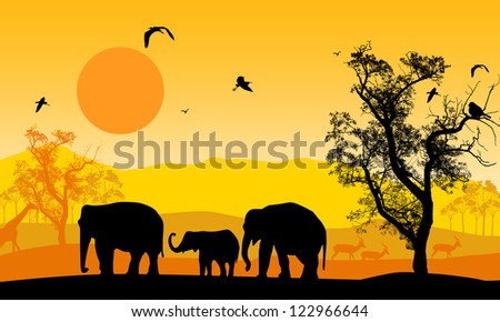 African wildlife at sunset, with elephants, giraffe and antelope - stock photo
