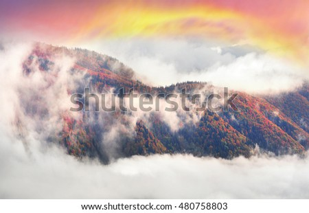 After a rain storm thunderstorm beautiful gentle mist rises cotton tufts on the background of the mountain alpine slopes as fibers smoke. Sea fog haze on the horizon
