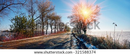 After rain and fog frost bound Autumn grass in shining armor, a blade of grass - icicles ice against the backdrop of the forest beautiful colorful scenic shine sparks soon winter snow fall in Ukraine. - stock photo