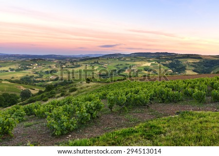 After the sunset, vineyards of Beaujolais, France - stock photo
