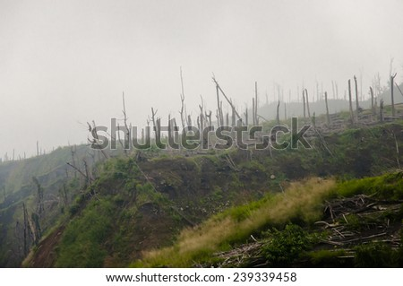 Aftermath of 2010 Mount Merapi Volcano Eruption - Indonesia - stock photo