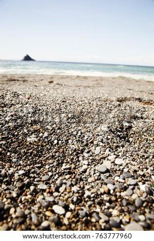 Mussels Found At Newport Beach