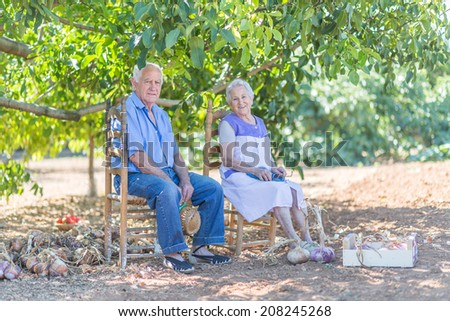 Aged couple is sitting under a tree in garden