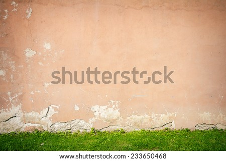 Aged weathered old wall with some green grass - stock photo