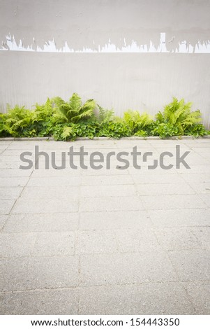 Aged weathered street with teared off posters and ferns   - stock photo