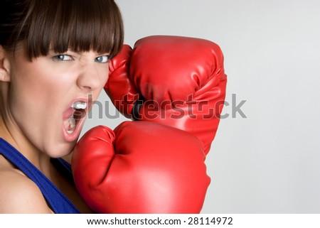 Aggressive Boxer - stock photo