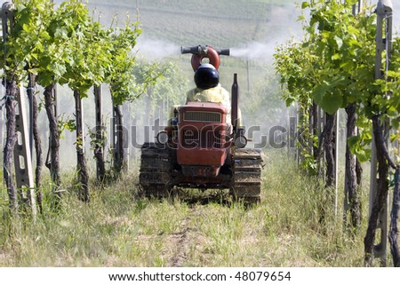 "Agricultural chemical treatments in spring vineyard ""Oltrepo Pavese"", Italy. - stock photo"