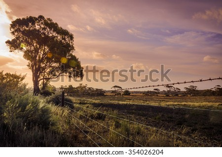 Agricultural cloudy landscape, Barbed fence paddock in Australian outback - stock photo