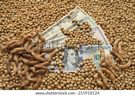 Agricultural concept, heap of soy beans and dollar banknotes - stock photo