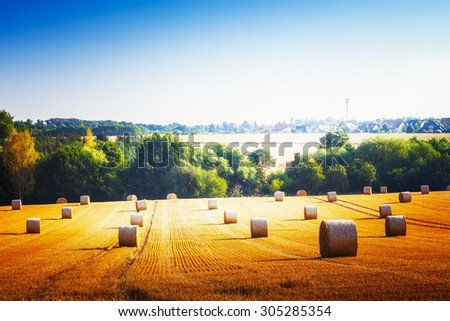 Agricultural field. Beautiful rural landscape with straw bales in summer - stock photo