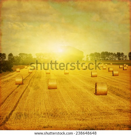 Agricultural field with hay bales at sunset. Grunge and retro style. - stock photo