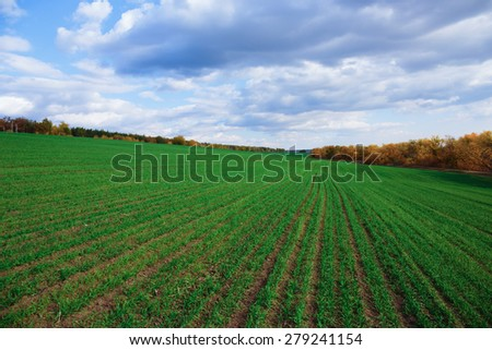 Agricultural fields and meadows in Europe - stock photo