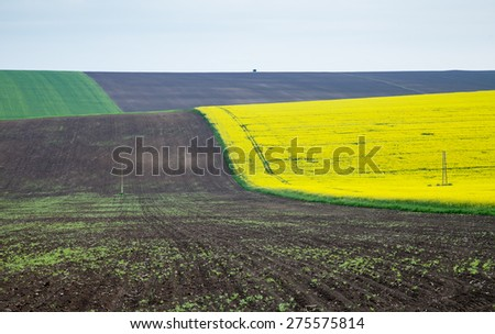 Agricultural land for plowing canola, wheat, corn and sunflower against the blue sky - stock photo