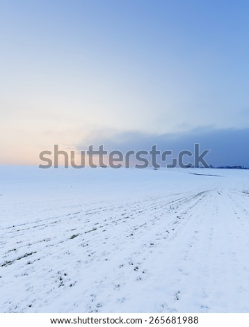 Agricultural land in winter - stock photo