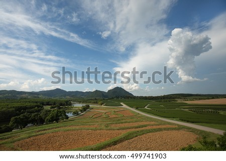 Agricultural lands peach vegetables and Tea which mountains back