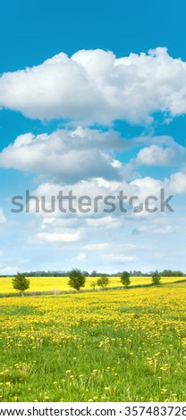 Agricultural landscape with yellow blooming rape field and dandelion meadow with cloudy sky - stock photo