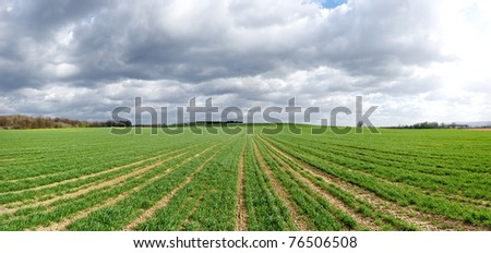 Agricultural panorama with dramatic sky - stock photo