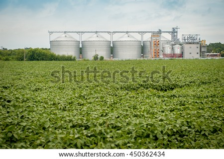 Agricultural Silo, foreground sunflower plantations - Building Exterior, Storage and drying of grains, wheat, corn, soy, sunflower against the blue sky