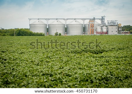 Agricultural silos in the fields