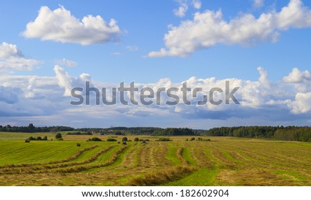 agricultural work on the field - stock photo